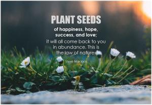 Seeds of love and abundance